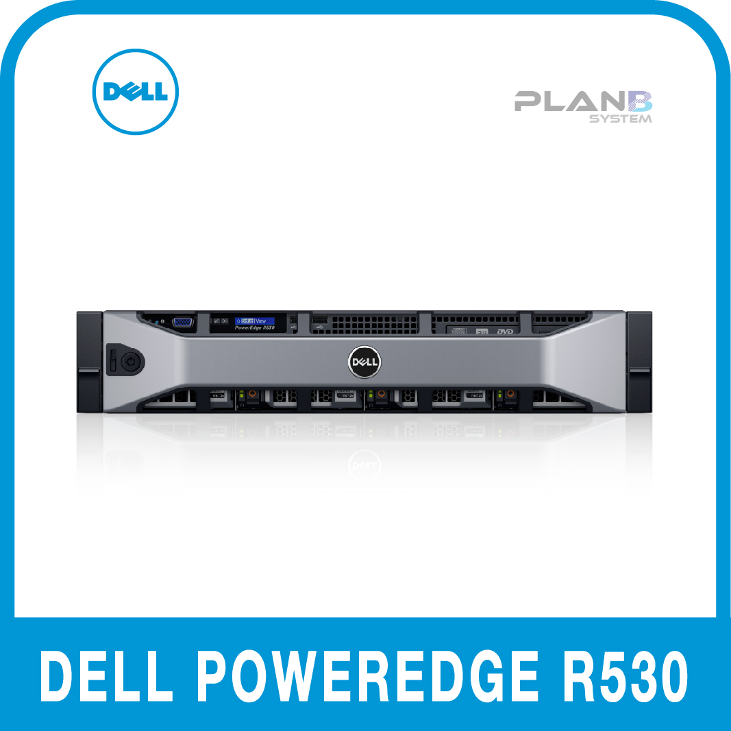 DELL PowerEdge R530 2U E5-2620v4 2.1 8C 8G 8LFF 1TB SATA H730PM 750W 3YR